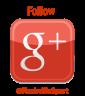 Google Follow Button NSN 85
