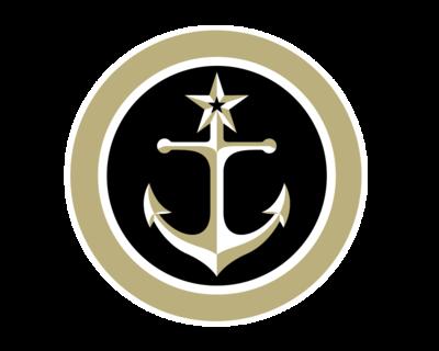 Commodores Set To Take On Gamecocks logo