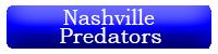 Nashville Predators Button