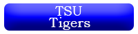 TSU Tigers Button